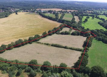 Thumbnail Land for sale in Greatham, Nr Petersfield