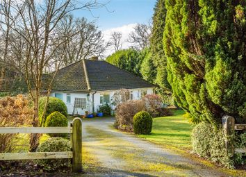 4 bed detached bungalow for sale in The Paddock, Haslemere GU27