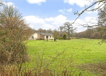 Thumbnail 3 bed detached bungalow for sale in Stockland, Honiton, Devon