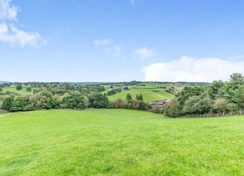 Thumbnail Equestrian property for sale in Basford Bridge Lane, Cheddleton, Leek