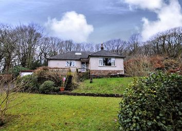 Thumbnail 4 bed detached bungalow for sale in Ivyleaf Hill, Bude, Cornwall