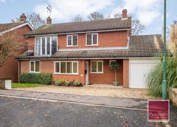 Thumbnail 4 bed detached house for sale in Parklands, Costessey, Norwich