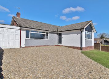 Thumbnail 3 bed detached bungalow to rent in Greenfield Rise, Cowplain, Waterlooville