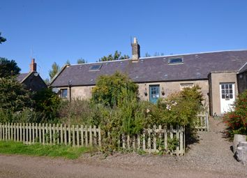 Thumbnail 3 bed cottage for sale in Oxenrig Farm Cottages, Lennel, Coldstream