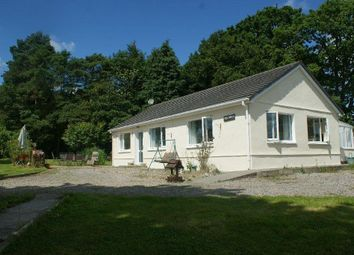 Thumbnail 3 bed detached bungalow for sale in Waungilwen, Drefach Felindre