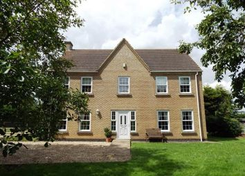 Thumbnail 5 bed equestrian property for sale in Littleport, Ely, Cambridgeshire