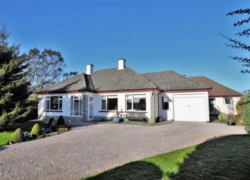 Thumbnail 5 bed detached bungalow for sale in Derril, Pyworthy, Holsworthy, Devon