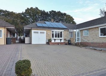 Thumbnail 3 bed bungalow to rent in Keats Close, Waterlooville