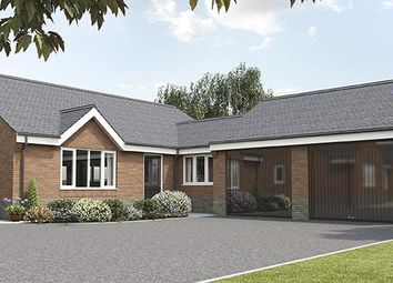 Thumbnail 3 bed detached bungalow for sale in 'the Danbury', The Croft, Top Road, Calow, Chesterfield