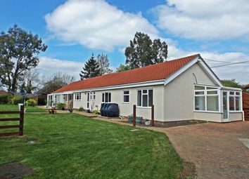 Thumbnail 6 bed bungalow for sale in Rode Lane, Carleton Rode, Norwich