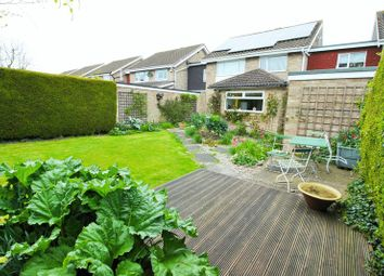 Thumbnail 4 bed link-detached house for sale in Spitalfields, Yarm