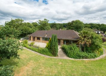 Thumbnail 4 bedroom bungalow for sale in Mott Street, Loughton, Essex