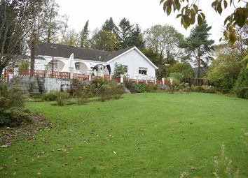Thumbnail 4 bed detached bungalow for sale in Cilycwm, Llandovery