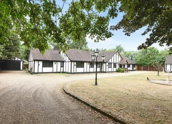 Thumbnail 6 bed detached bungalow for sale in Virginia Water, Surrey