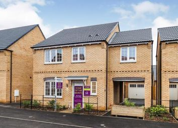 Thumbnail 4 bed detached house for sale in The Limes, Robins Wood Road, Nottingham