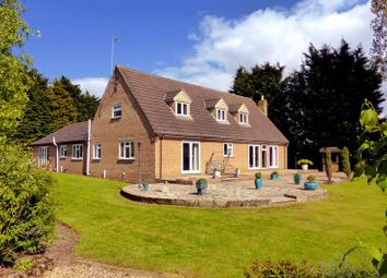 Thumbnail 4 bed country house for sale in Rands Drove, Marshland St James, Norfolk