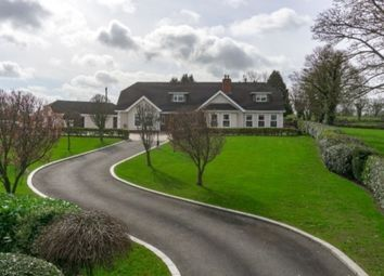 Thumbnail 7 bed detached house for sale in Ballygowan Road, Hillsborough