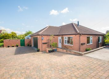 Thumbnail 4 bedroom detached bungalow for sale in Post Office Lane, Spilsby