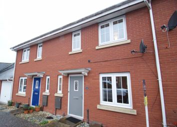 3 bed terraced house to rent in Walsingham Place, Exeter EX2