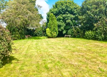 Thumbnail 4 bed detached house for sale in The Green, Shipdham, Thetford