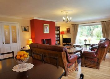 Thumbnail 5 bed detached house for sale in Talybont, Near Barmouth