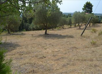 Thumbnail Land for sale in Sani, Chalkidiki, Gr