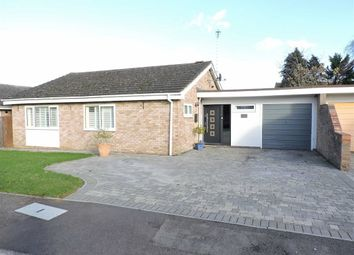 Thumbnail 3 bed detached bungalow for sale in Elm Tree Close, Byfleet, Surrey