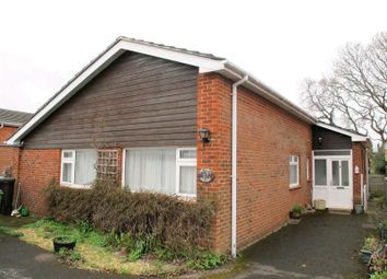 Thumbnail 3 bed bungalow to rent in Osborne View Road, Hill Head, Fareham