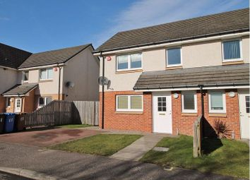 Thumbnail 3 bedroom semi-detached house for sale in 66 Bridgend Street, Dundee