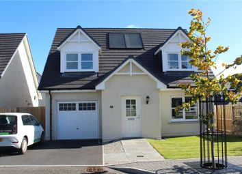 Thumbnail 3 bed detached house to rent in St Thomas, Monymusk, Inverurie, Aberdeenshire