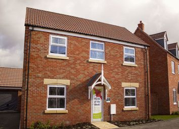 Thumbnail 4 bed detached house for sale in The Waddington At The Heights, Newark