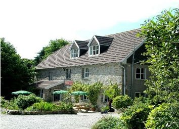 Thumbnail Hotel/guest house for sale in Old Church Road, Trink, St Ives