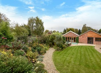 Thumbnail 4 bedroom detached bungalow for sale in Nicholas Road, Henley-On-Thames