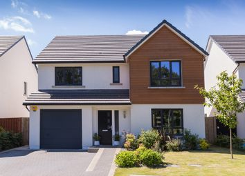 Thumbnail 4 bed detached house to rent in Petrie Way, Stoneywood, Bucksburn, Aberdeen