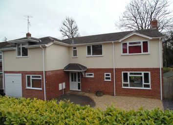 Thumbnail 5 bedroom detached house for sale in Neville Close, Basingstoke