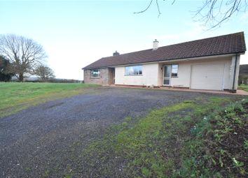 Thumbnail 2 bedroom bungalow to rent in Ash Thomas, Tiverton, Devon