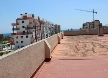 Thumbnail Studio for sale in Mil Palmeras, Torre De La Horadada, Alicante, Valencia, Spain