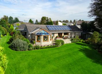 Thumbnail 4 bed detached bungalow for sale in Chapels Hill, Greysouthen, Cockermouth, Cumbria