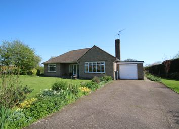 Thumbnail 4 bed detached bungalow for sale in The Street, Wittersham, Tenterden