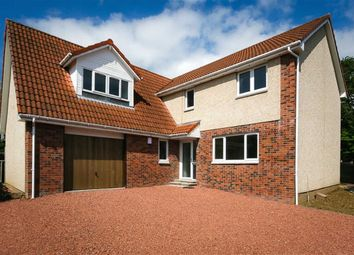 Thumbnail 5 bed detached house for sale in Hillcrest Place, Denny, Stirlingshire
