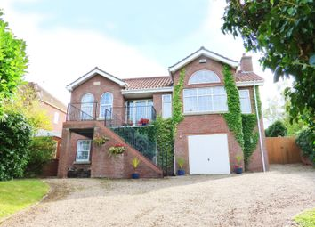 Thumbnail 4 bed detached house for sale in Brinkhill, Louth
