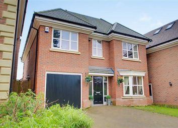 Thumbnail 6 bed detached house for sale in Park Road, Walsall, West Midlands