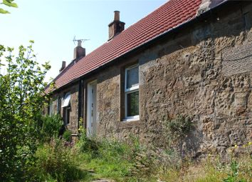 Thumbnail 2 bed terraced house to rent in 2 Burnside Farm Cottage, Boarhills, St. Andrews, Fife