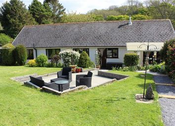 Thumbnail 5 bedroom detached bungalow for sale in Llanmorlais, Swansea