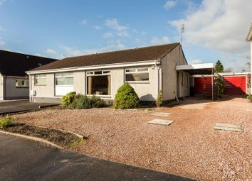 Thumbnail 3 bed semi-detached bungalow for sale in Muirend Avenue, Oakbank, Perth, Perthshire