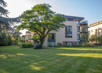 Thumbnail 3 bedroom flat for sale in Meridian Gardens, Newmarket