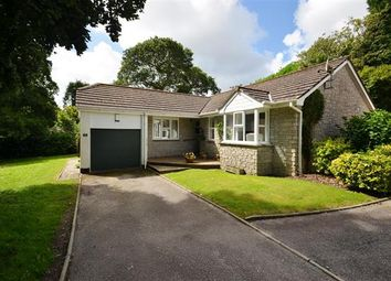 Thumbnail 3 bedroom bungalow for sale in Trevoney, Budock Water, Falmouth
