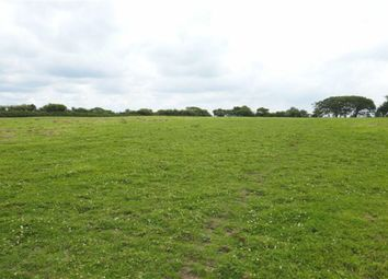 Thumbnail Land for sale in Bradworthy, Holsworthy