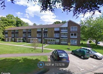 Thumbnail 2 bed flat to rent in Cotswold Ct., Horsham