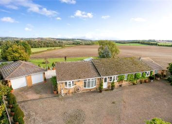 Thumbnail 5 bed detached bungalow for sale in Britwell Road, Watlington, Oxfordshire